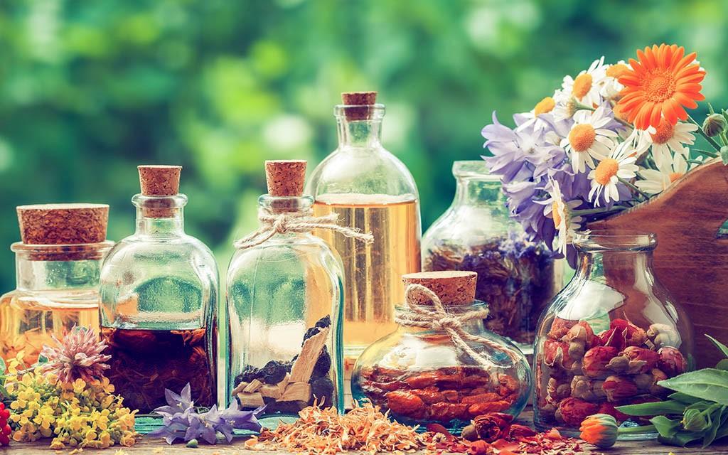 طب سنتی + گیاهان دارویی