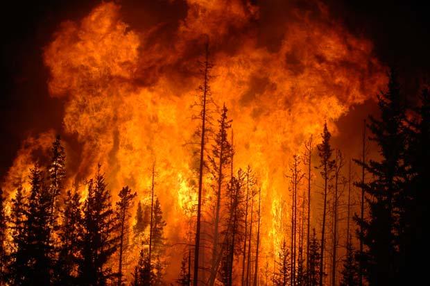 آتش جنگل های گیلان مهار شد
