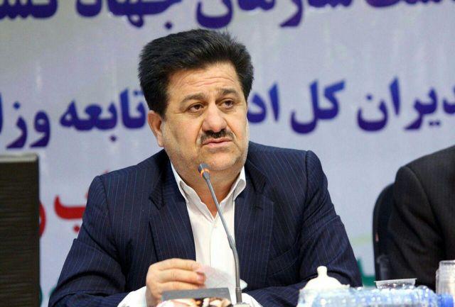 برنج خوزستان دوباره قد می کشد/45 دصد شکر کشور از خوزستان تامین می شود