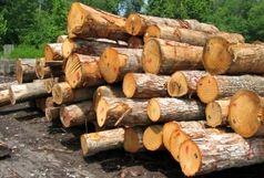 کشف بیش از 9 تن چوب قاچاق در رودبار