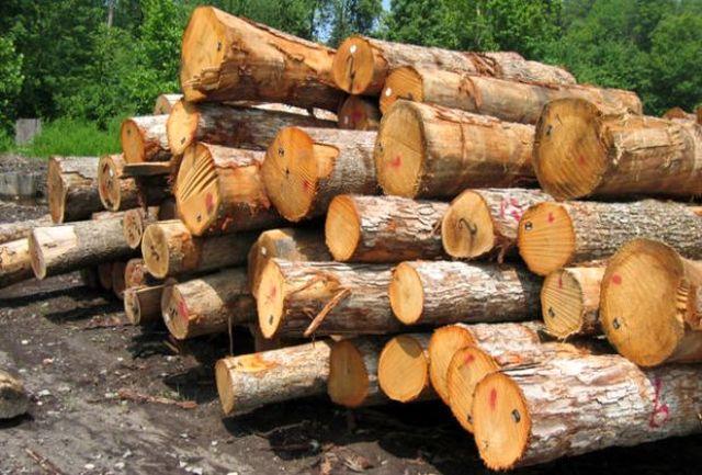 کشف 15 تن چوب آلات قاچاق در خلخال