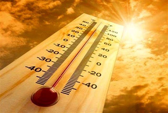 ماندگاری هوای گرم روزانه در استان تا پایان هفته