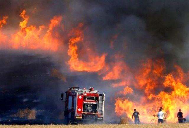 شهرکهای صهیونیستنشین در آتش سوختند/ عکس