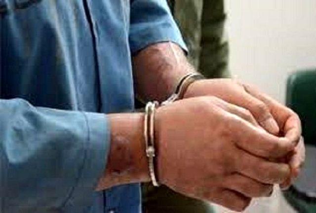 بازداشت سارقان 500 دلاری در نازی آباد
