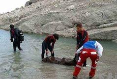 کشف جسد 4 کودک در شرق کشور