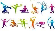 ارائه آیین نامه «شورای برون مرزی ورزش کشور»