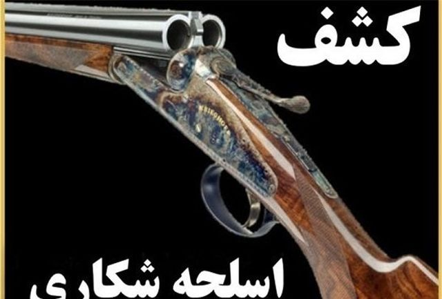 کشف دو قبضه اسلحه شکاری در مهران