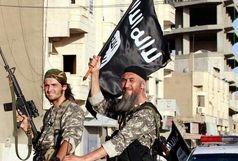 آمریکا به فکر احیای داعش است؟