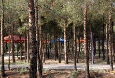 بوستان بانوان در قم میشود