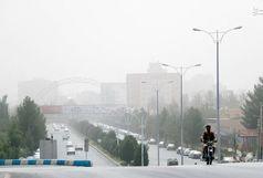 مقابله با گردوغبار در کرمان نیازمند اعتبار بیشتر است / منابعطبیعی برای احداث کمربند سبز از شهرداری حمایت کند