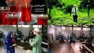معرفی «چای ایرانی- تولید ملی» به مخاطبان عرب زبان