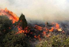 آتش سوزی در جنگلهای کوه سفید لنده