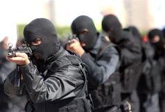 اژدهای هفت سر و تیغ بران نهاد مردمی وزارت اطلاعات