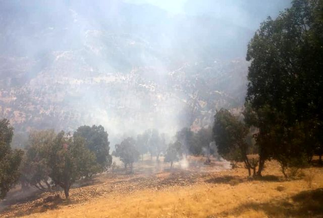 مهار آتش سوزی در ارتفاعات لردگان