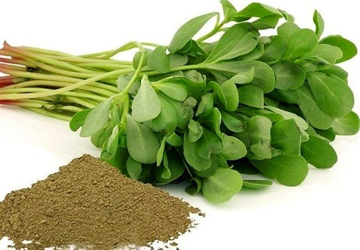 کدام سبزی درمان 99 درد است ؟