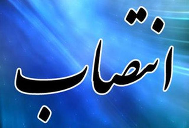 انتصاب پنج تن از اعضای هیات های رسیدگی به تخلفات اداری وزارت اقتصاد