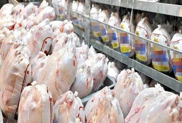 توزیع مرغ گرم و منجمد تا رسیدن به قیمت مصوب تنظیم بازار ادامه دارد
