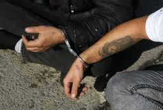 جیب بری های دزد سابقه دار در بی آر تی