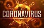بررسی آخرین اقدامات علوم پزشکی شیراز در مقابله با ویروس کرونا