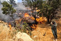 تلاش ها برای مهار آتش در بخش الوار ادامه دارد