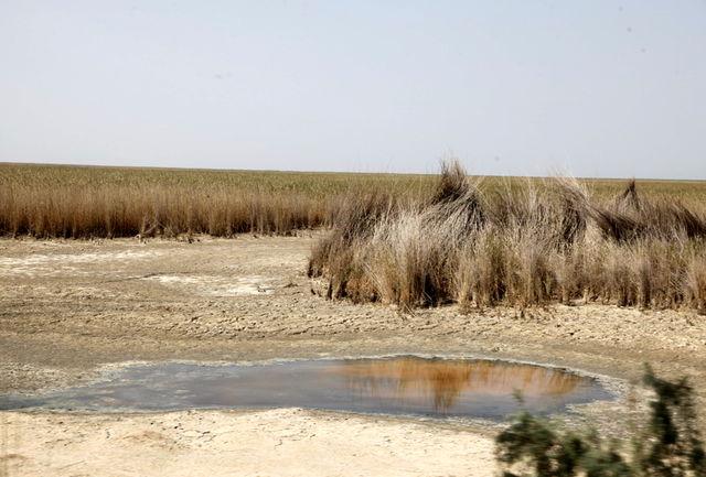 یک میلیارد و 270 میلیون متر مکعب حق آبه برای نخستین بار به تالاب هورالعظیم اختصاص یافت