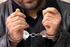 دستگیری سارق حرفهای در زابل