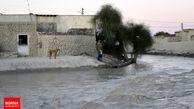 «خشت به خشت»، کمپینی برای کمک به سیل زدگان سیستان و بلوچستان