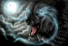 شایعه حمله گرگ به انسان درشهرستان سجاسرود خدابنده