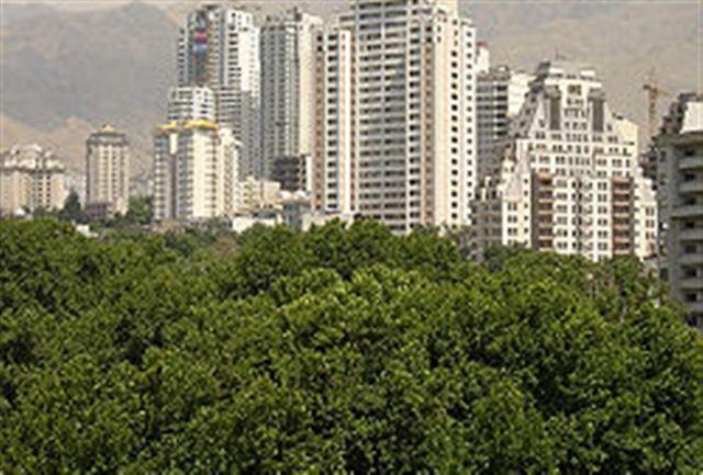 دستگیری دو متخلف قلع باغات در الهیه