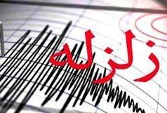 زلزله سرجنگل زاهدان خسارتی نداشت