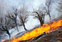 کوه حاتم بهمئی همچنان در آتش می سوزد