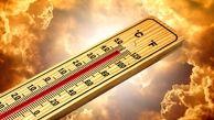 افزایش دمای هوا تا ۵۰ درجه در بوشهر
