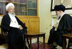 آیت الله مکارم شیرازی به دیدار آیت الله علوی گرگانی رفت