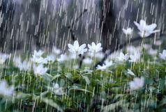 باران در راه ۵ استان آلوده