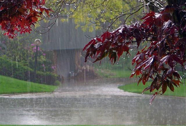 هشدار هواشناسی در خصوص بارش باران و لغزندگی جاده ها