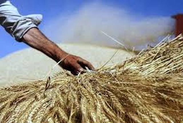 کشاورزان خسارت دیده از پرداخت جریمه تاخیر معاف شدند