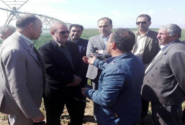 ایران یکی از کشورهای پیشرو در حوزه اجرای آبیاری نوین است
