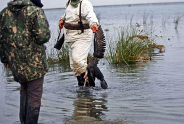 خلع سلاح ۱۳۹۹ شکارچی در مازندران