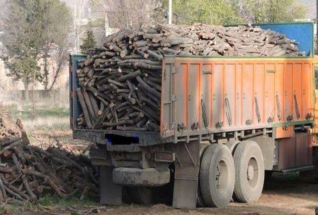 کشف 25 تن چوب قاچاق در مرودشت