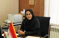 نامنویسی ۳۹۶ نفر برای انتخابات شوراهای روستا در همدان