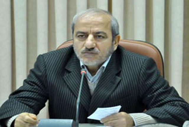 شوراها عالیترین جلوه مردمسالاری در كشور هستند