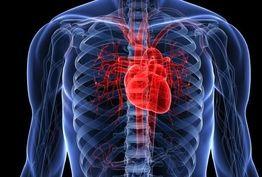 معجون طبیعی برای رفع گرفتگی عروق قلب