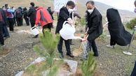 ۱۸۰ هکتار از اراضی منابع طبیعی تحویل منطقه یک شد
