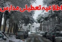 مدارس تهران فردا  30 دی 98 هم تعطیل است؟!