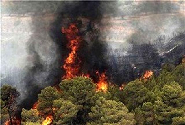 خطر آتش سوزی در جنگل های گلستان