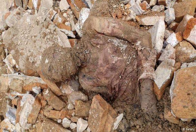 جسد مومیایی کشف شده در شهرری کجا دفن شد ؟