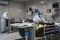 توزیع غذای متبرّک هیئت رزمندگان اسلام در بیمارستان های قم