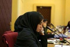سال جدید، سالی پر از اتفاقات شیرین و دلنشین برای مردم ایران