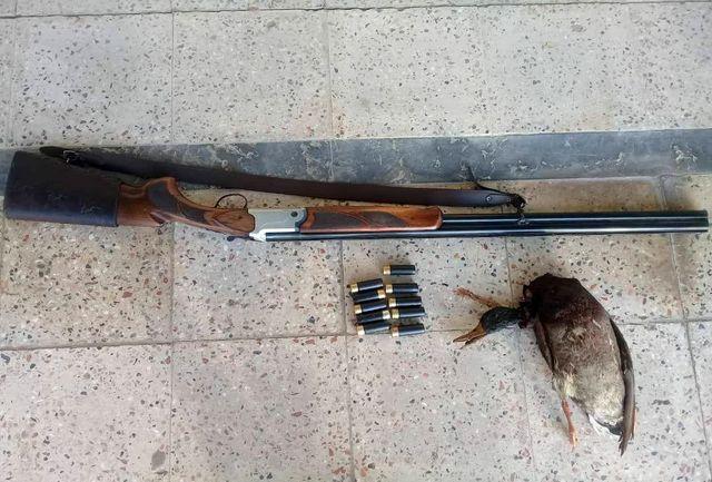 دستگیری شکارچی غیرمجاز در فیروزکوه