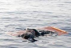 نوجوان 17 ساله در استخر آب کشاورزی روستای «نوغاب پسکوه» غرق شد
